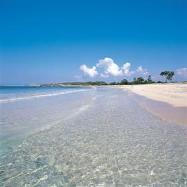 Playa-es-caragol